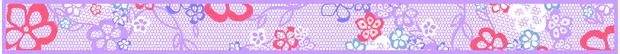 trenner_620x54_jpg_center_ffffff_0